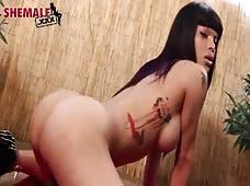 Adriana Lynn Rush Horny Tranny Ass