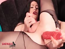 Dildo Up The Ass Of Horny Tgirl Penny Tyler
