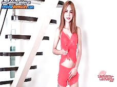 Ladyboy May Rock Hard Delights